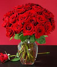 Valentine's Roses at ProFlowers